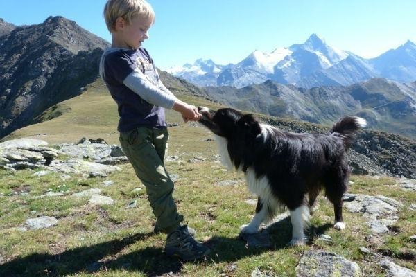 cane e bambino che giocano