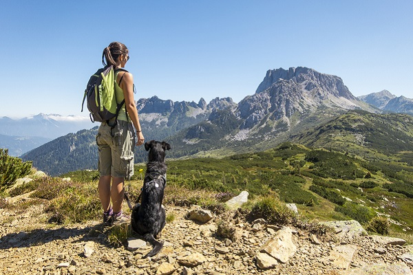 In vacanza con il cane: dove andare e come muoversi
