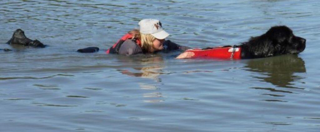 Cane che salva una donna in mare