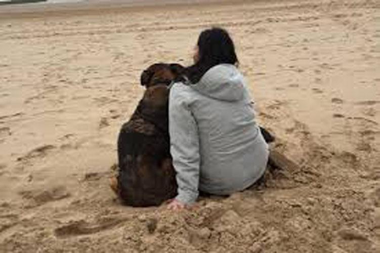 Cane in spiaggia con una ragazza