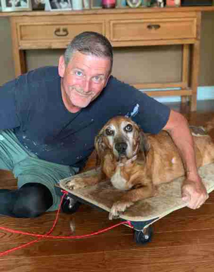 Kaylee, la cagnolina che può di nuovo camminare grazie al suo proprietario
