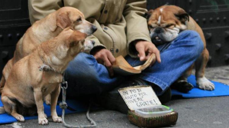 Como: cane rubato da un mendicante utilizzato per impietosire i passanti