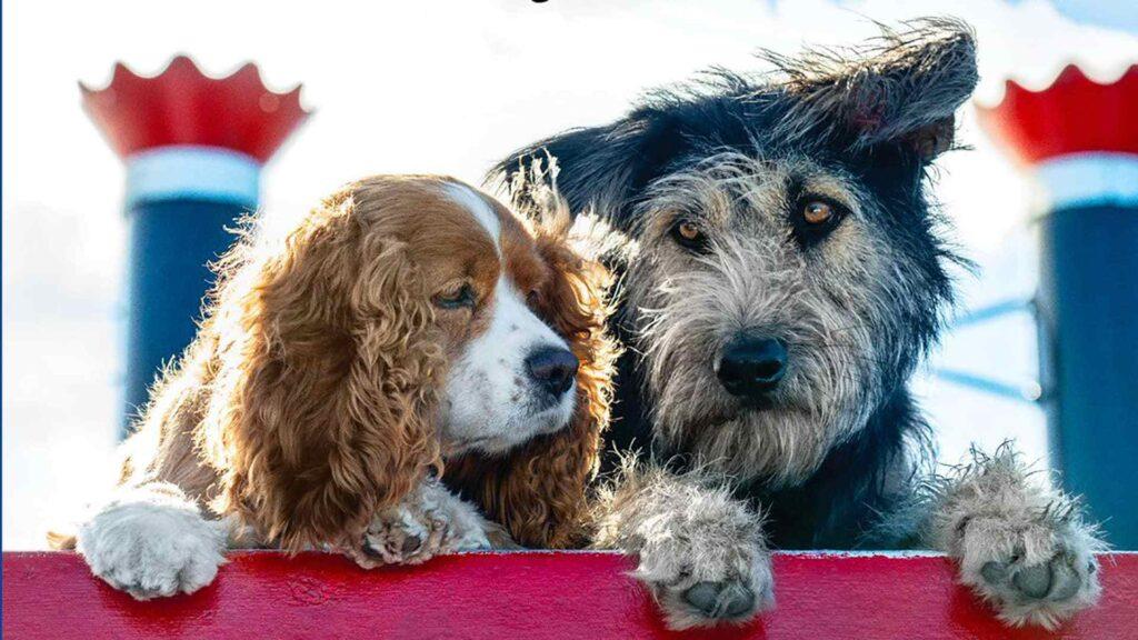 I cani di Lilli e il Vagabondo