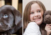L'amicizia tra un cane e una bambina