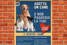 Rose, adottare un cane porta fino ad un risparmio di 250 euro sulle tasse