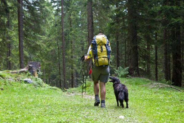 escursione cane e padrone