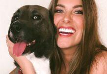 cane-portato-dal-dentista-per-la-prima-volta-ecco-la-sua-reazione