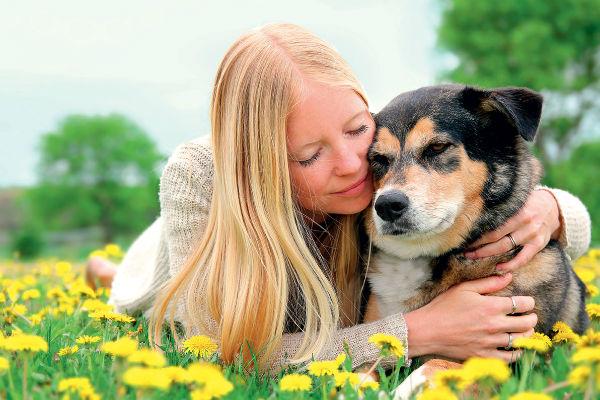 Cani e pensionati: perché Fido è un aiuto per gli anziani