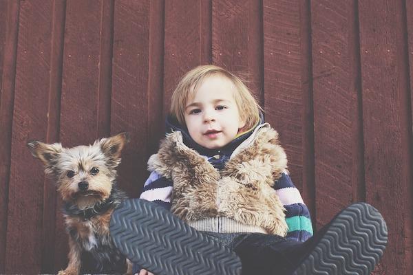 cani e bambini, il loro rapporto
