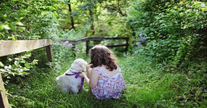 Il meraviglioso rapporto tra cane e bambini