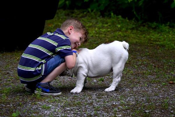 Come addestrare il cane a stare con i bambini in tutta sicurezza