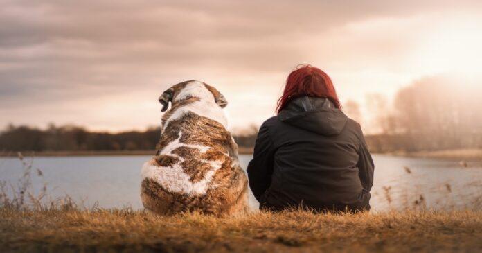 In che modo il cane sceglie la sua persona preferita?