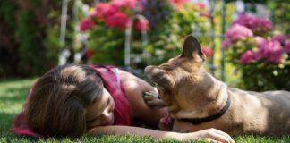 Perché i cani vengono se piangi?