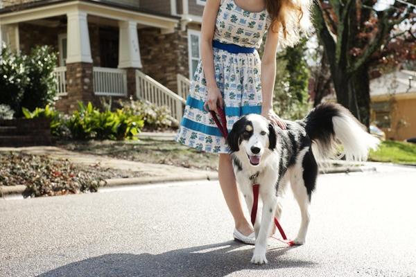 ragazza che passeggia insieme al suo cane