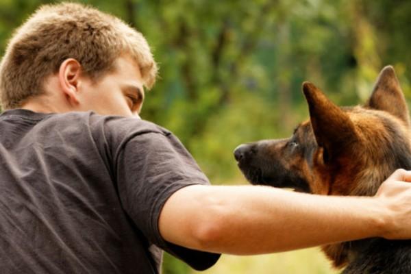 cane accanto al padrone
