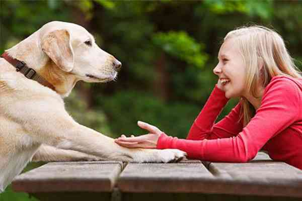 cane che ascolta