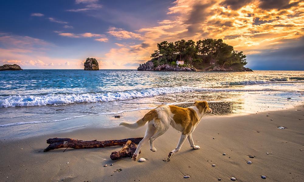 passeggiata-spiaggia