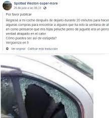 Per salvare un cane peluche un uomo ha distrutto il finestrino di un'auto
