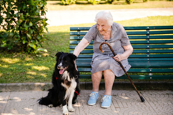 cane e anziana