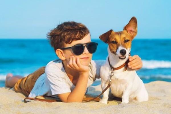 cane e bimbo in spiaggia