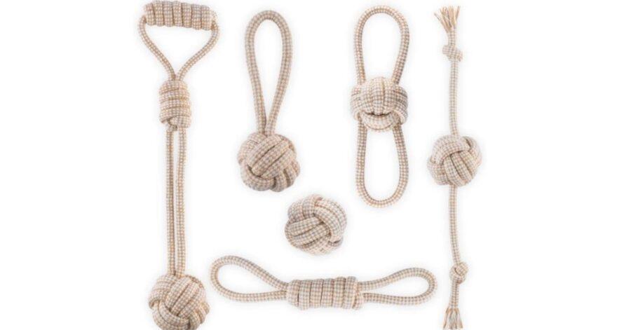 corde cane