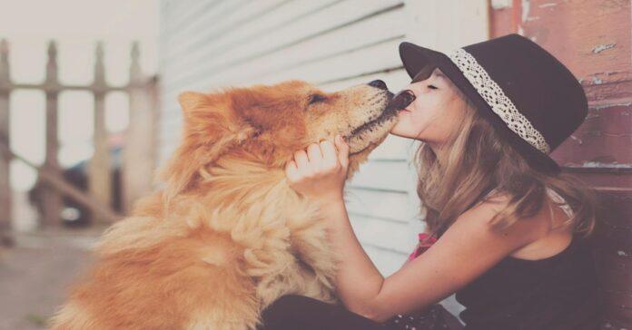 al cane piace il suono dei baci