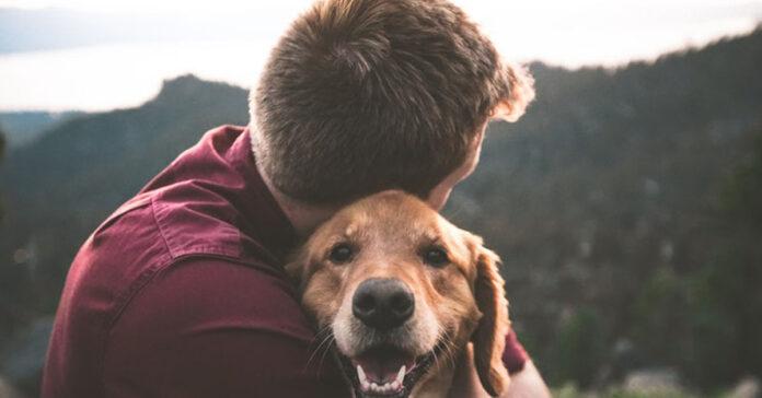 Cane abbracciato al suo proprietario