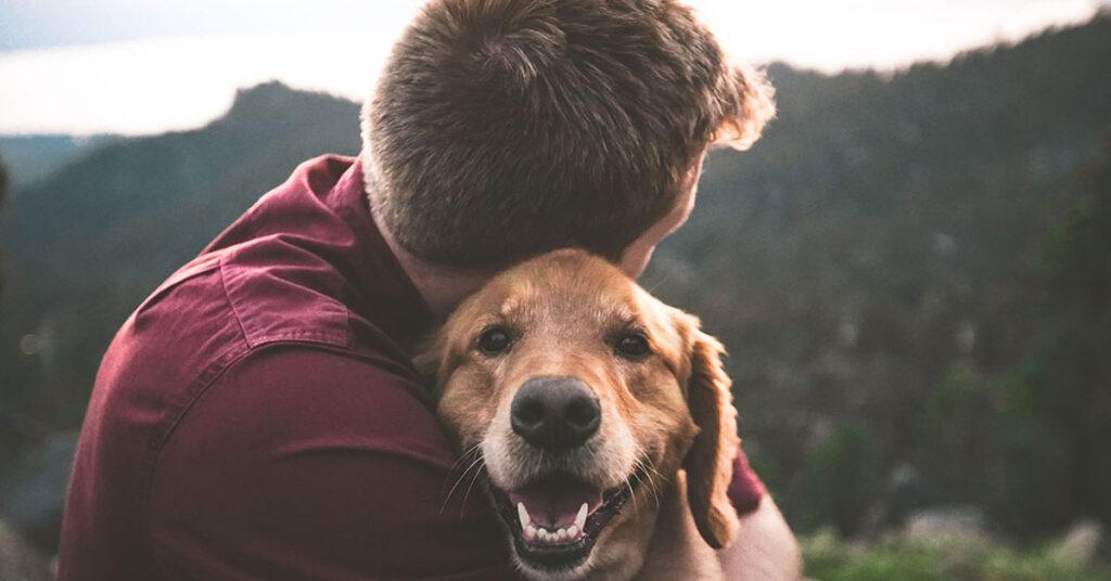 Cane abbracciato da un ragazzo