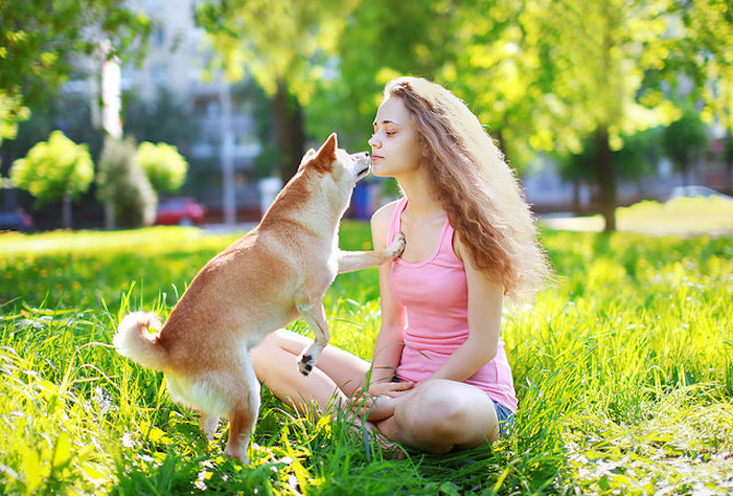 il cane ama il suono del bacio