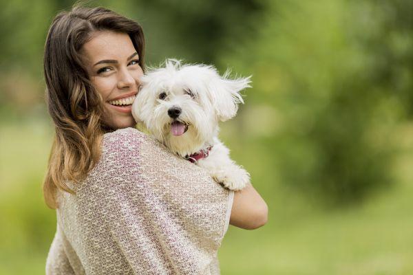 Giochi per cani malati: i modi per farli esercitare e divertire