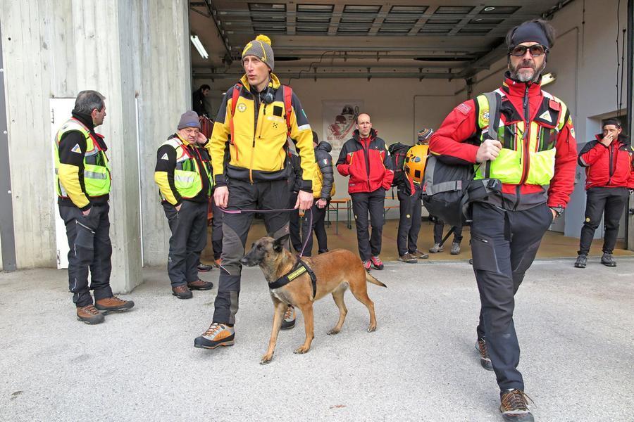 Squadra di cani da ricerca