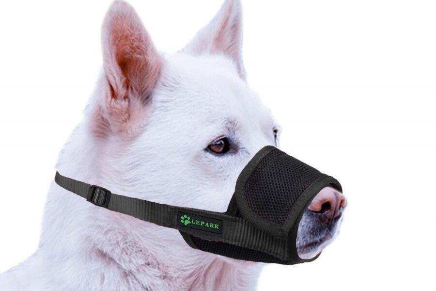 museruola regolabile per il cane