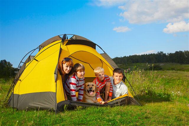 cane in campeggio con la famiglia