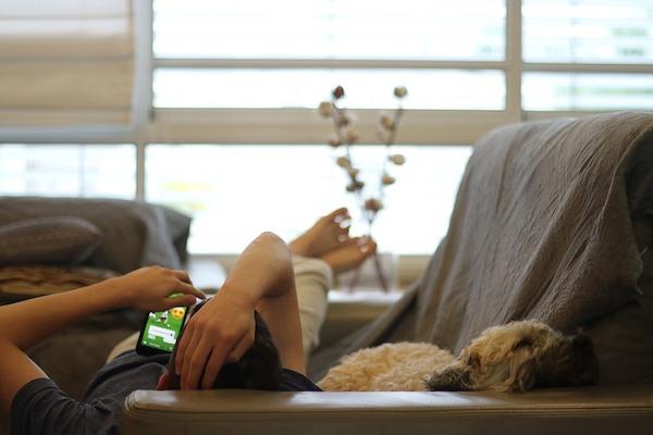 Perché ai cani piace guardare gli altri cani in televisione