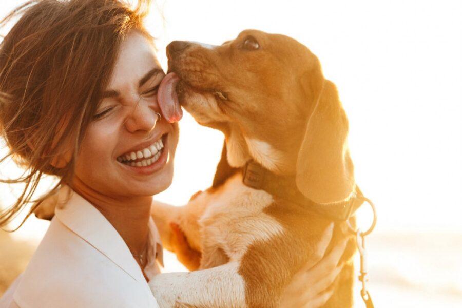 cane lecca in faccia ragazza