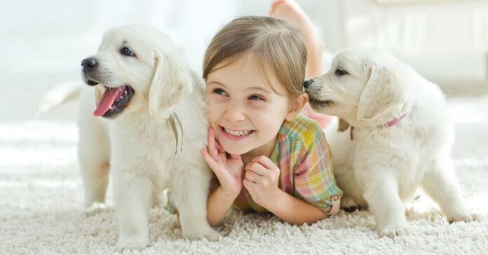 Come farsi amare dal proprio cane