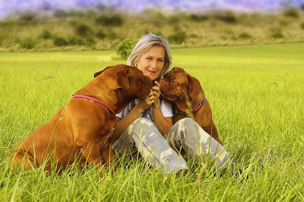 Perché i cani di taglia grande muoiono prima?