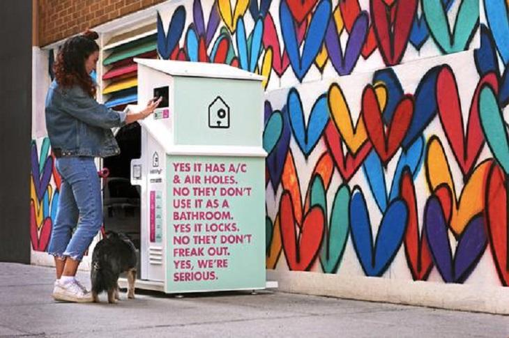 I cani non possono entrare nei negozi di alimentari? Ecco la soluzione