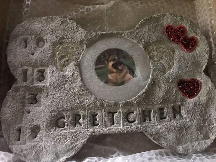 Il cane e la dolce tradizione condivisa con il postino