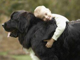 bimbo abbraccia cane