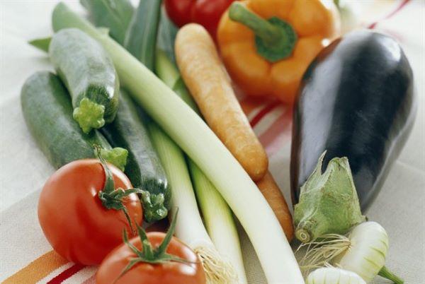 verdure per cani in gravidanza