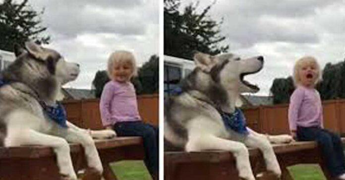 Cane che parla con una bambina