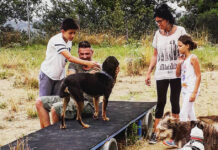 Cani al Dog Ranch