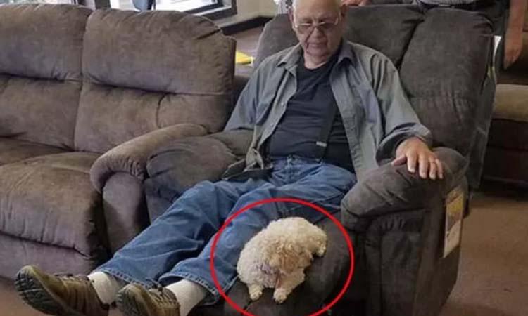 Il cane Coco con il suo proprietario