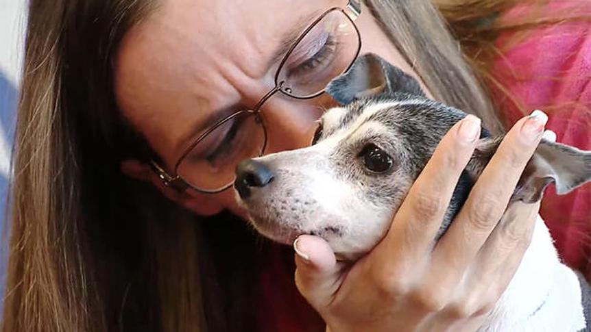 La storia del cane Dutchess