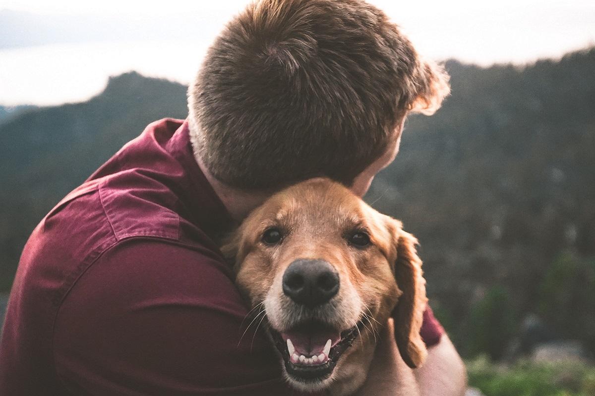 abbraccio al cane