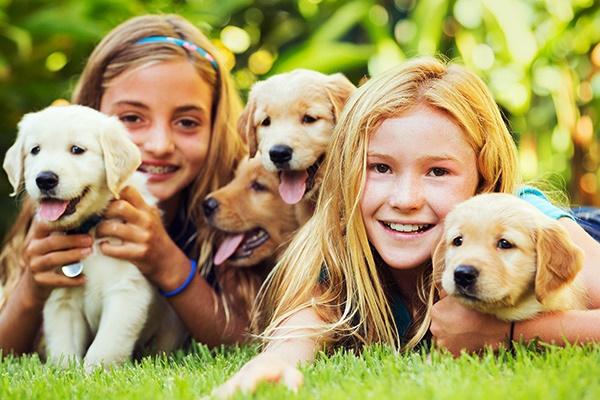 bambine e cuccioli