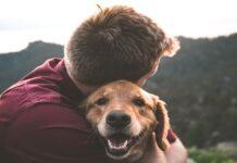 cane e personalità del proprietario