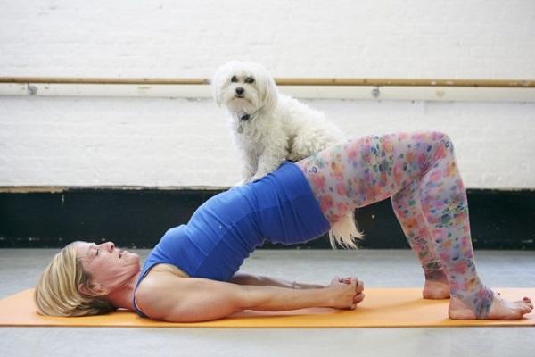 esercizio fisico con cane