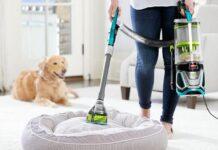 pulire casa con cane